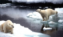 climate_change_0218